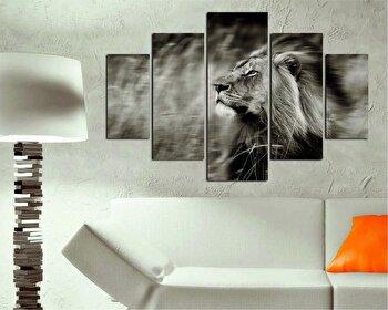 Tablou decorativ multicanvas Destiny, 5 Piese, 247DST2912, Multicolor elefant