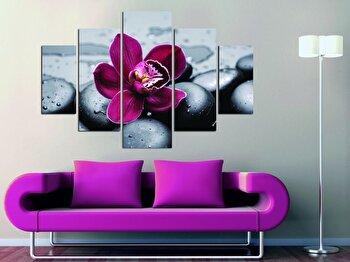 Tablou decorativ multicanvas Miracle, 5 Piese, Floral, 236MIR1930, Multicolor elefant