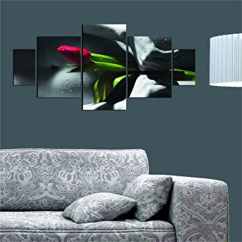Tablou decorativ multicanvas Dilly 5 Piese, 222DLY1986, Multicolor imagine