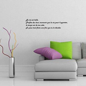 Sticker decorativ de perete French Wall, 753FRE1026, Negru elefant