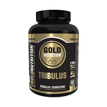 GoldNutrition Tribulus 550 mg, 60 capsule GoldNutrition