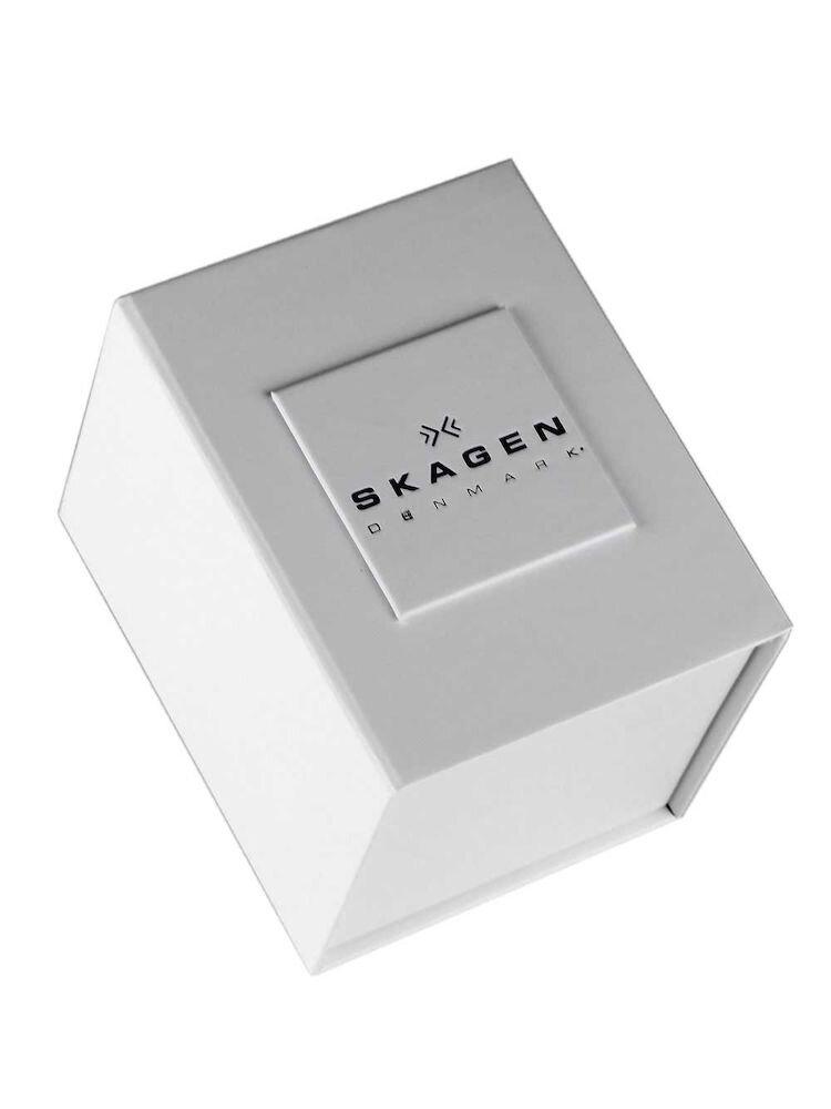 Ceas Skagen Grenen SKW6160