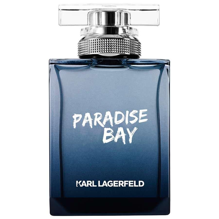 Apa de toaleta Paradise Bay, 50ml, pentru barbati