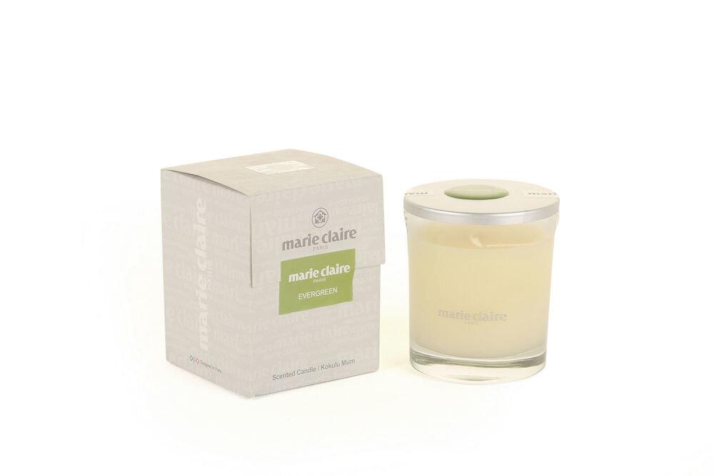 Lumanare aromaterapie, Evergreen, 110 gr