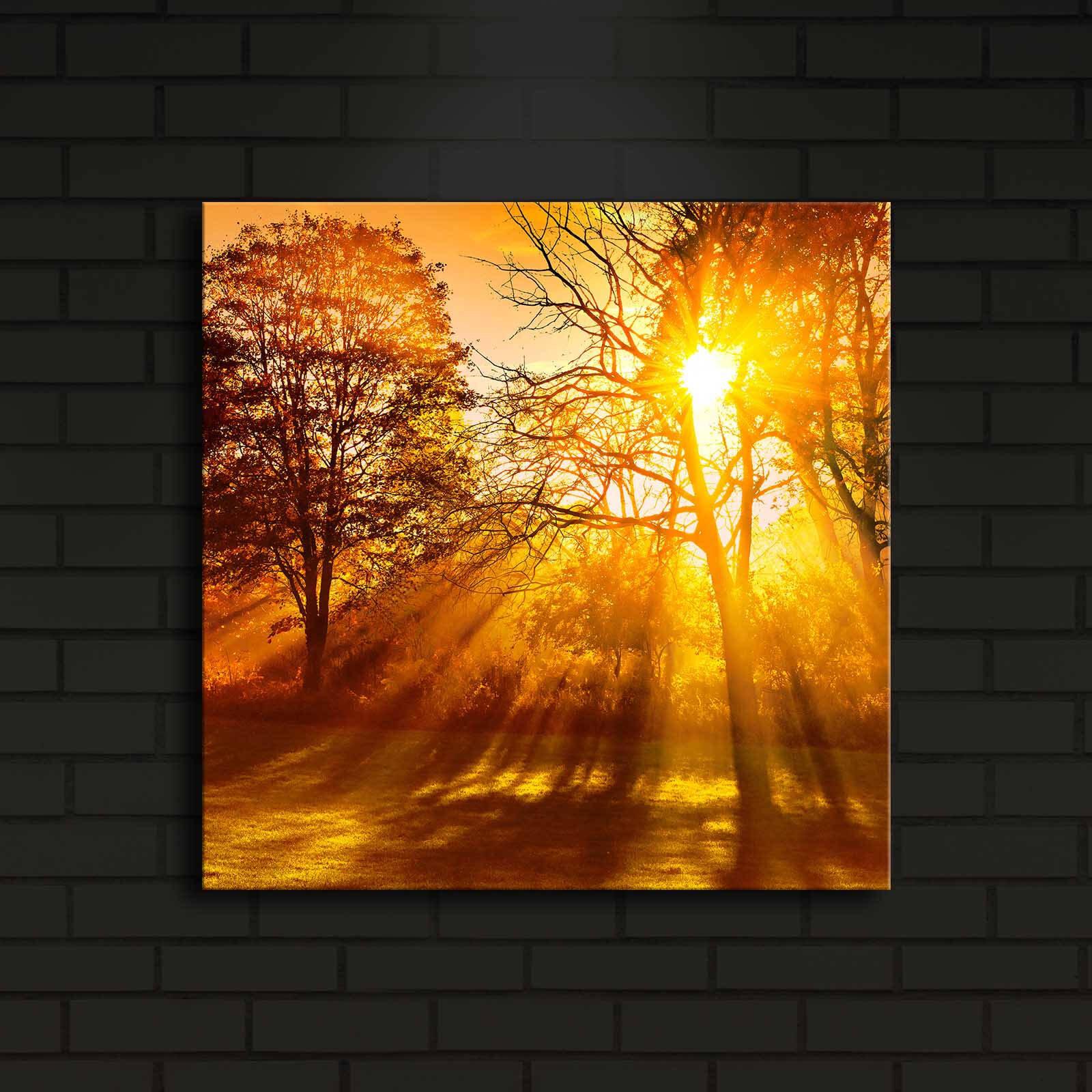 Tablou decorativ canvas cu leduri Shining