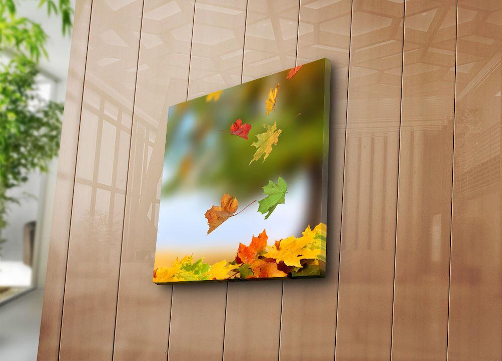 Tablou decorativ canvasBonanza