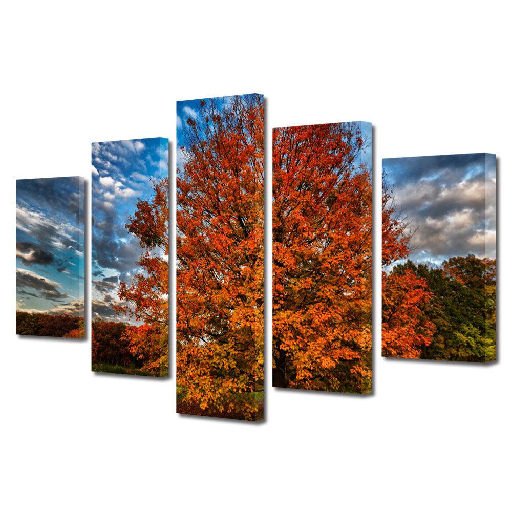 Set Tablouri Multicanvas 5 Piese Peisaje Nori in viteza