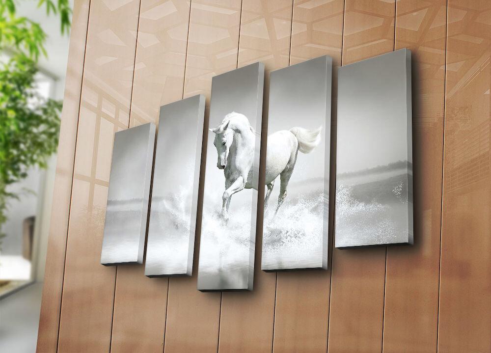 Tablou decorativ pe panza Bonanza, 242BNZ4219, 5 Piese, panza