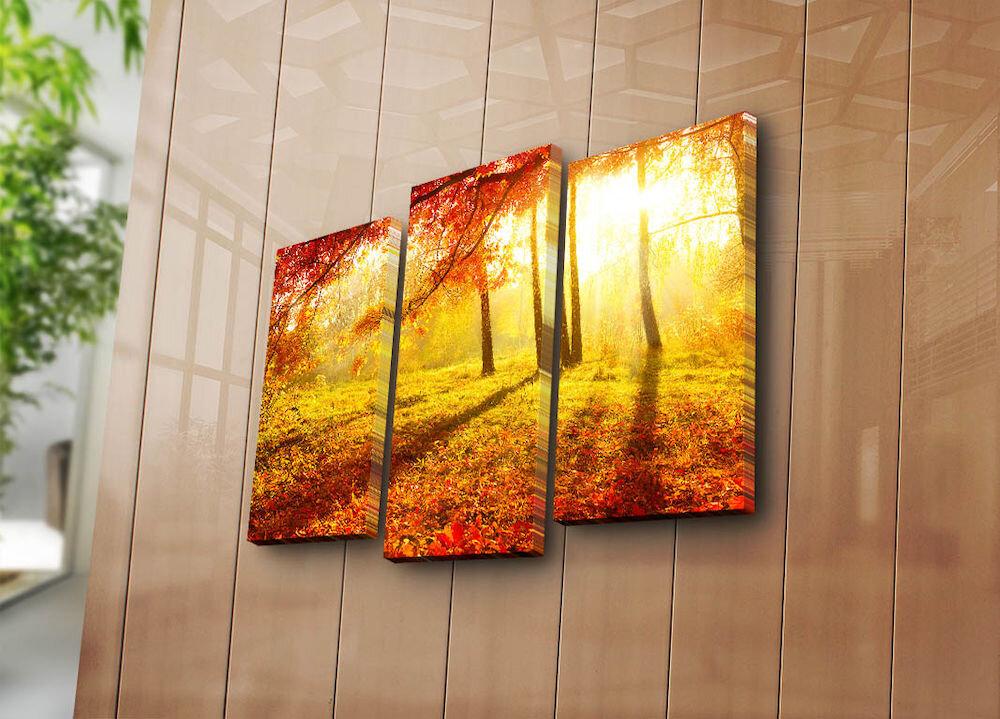 Tablou decorativ pe panza Bonanza, 242BNZ3211, 3 Piese, panza