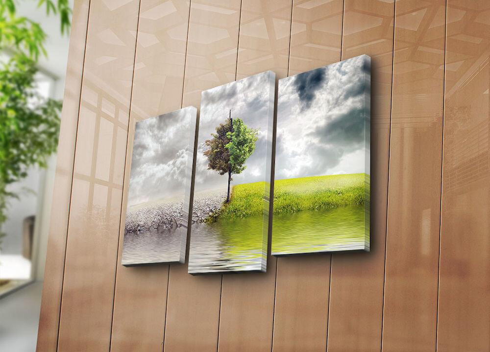 Tablou decorativ pe panza Bonanza, 242BNZ3248, 3 Piese, panza