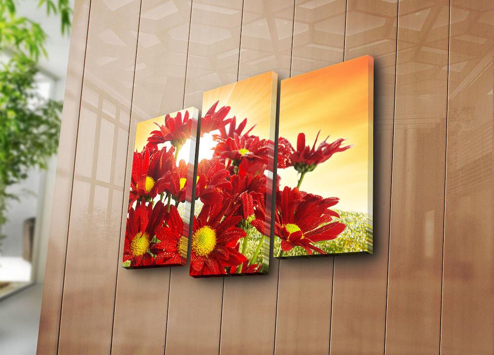 Tablou decorativ pe panza Bonanza, 242BNZ3256, 3 Piese, panza