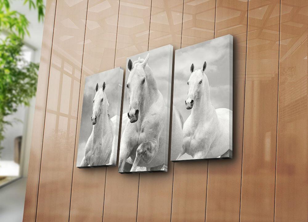 Tablou decorativ pe panza Bonanza, 242BNZ3266, 3 Piese, panza