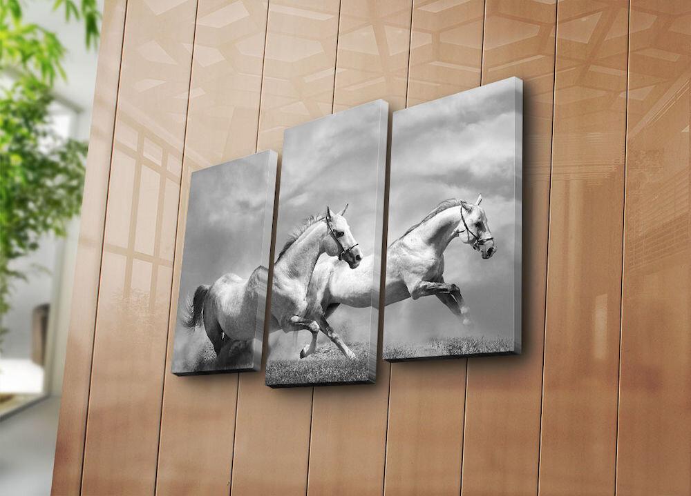 Tablou decorativ pe panza Horizon, 237HRZ3201, 3 Piese, panza