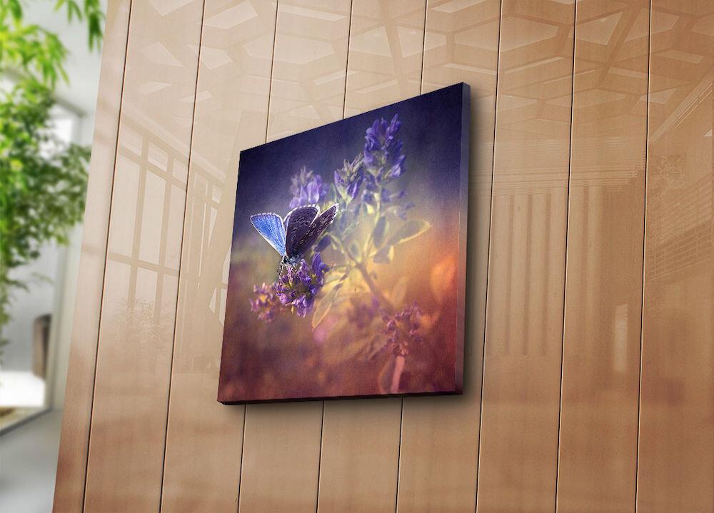 Tablou decorativ pe panza Bonanza, 242BNZ1236, 45 x 45 cm, panza