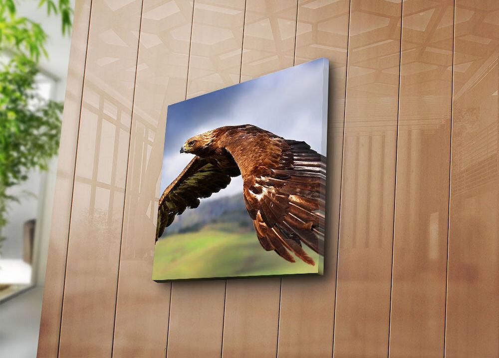 Tablou decorativ pe panza Sightly, 252SGH1216, 45 x 45 cm, panza
