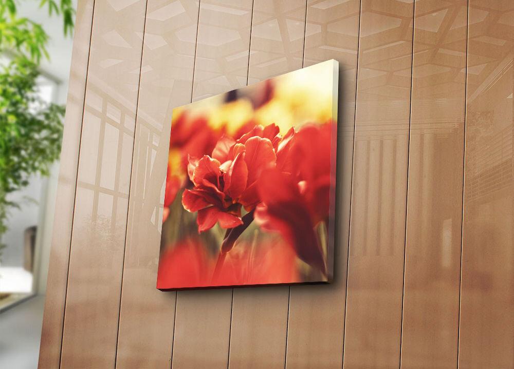 Tablou decorativ pe panza Sightly, 252SGH1222, 45 x 45 cm, panza