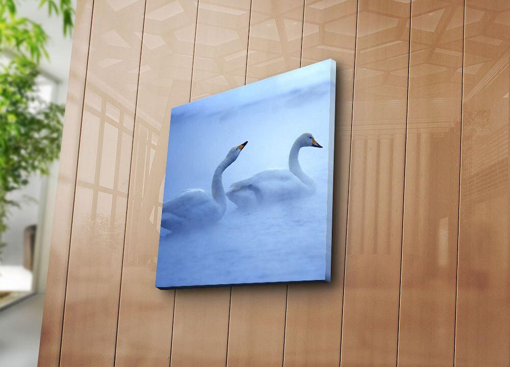 Tablou decorativ pe panza Sightly, 252SGH1241, 45 x 45 cm, panza