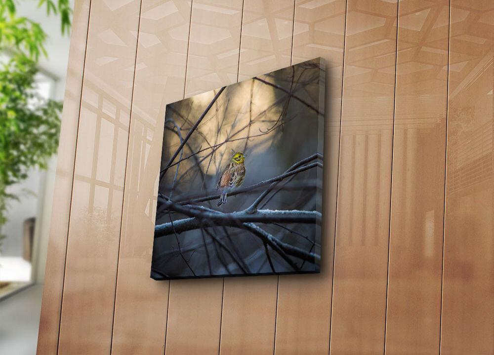 Tablou decorativ pe panza Sightly, 252SGH1247, 45 x 45 cm, panza
