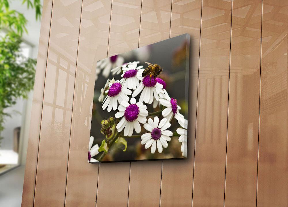 Tablou decorativ pe panza Sightly, 252SGH1250, 45 x 45 cm, panza