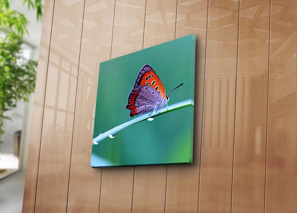 Tablou decorativ pe panza Sightly, 252SGH1209, 45 x 45 cm, panza